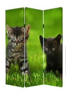"1"" x 48"" x 72"" Multi-Color, Wood, Canvas, Curious Cat - Screen"