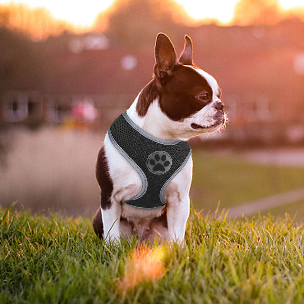Breathable Paw Print Cat Dog Harness Reflective Vest