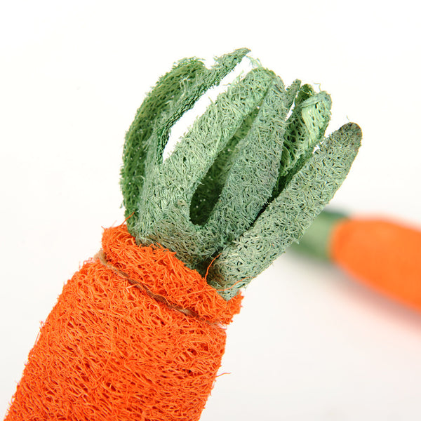 Pets Carrot Shaped Loofah Sponge Chew Toy