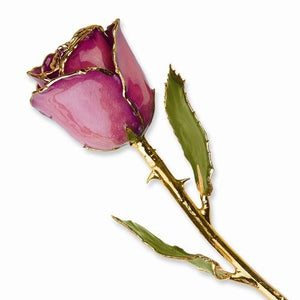 Lacquer Dipped Gold Trim Fuchsia Rose - Dipped Rose - Aydins_Jewelry