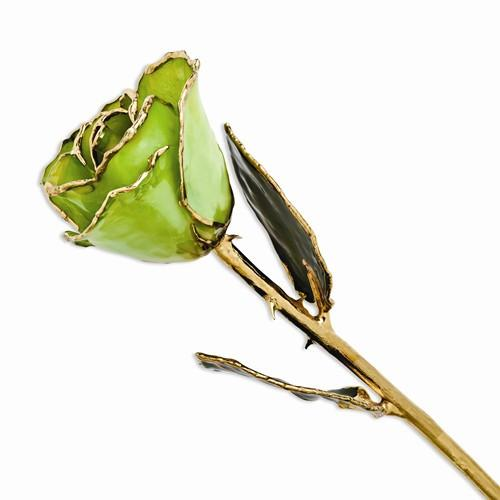 Laquer Dipped Gold Trimmed Peridot/Topaz Rose - Dipped Rose - Aydins_Jewelry