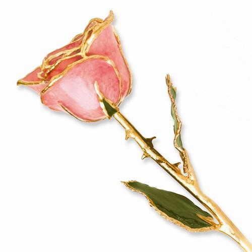 Lacquer Dipped Gold Trim Pink Rose - AydinsJewelry
