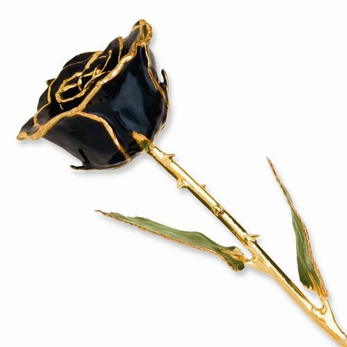 Lacquer Dipped Gold Trim Black Rose - AydinsJewelry