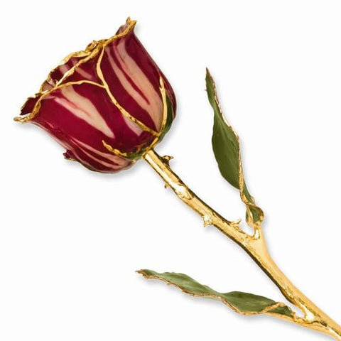 Lacquer Dipped Gold Trim Abracadabra Rose - Dipped Rose - Aydins_Jewelry
