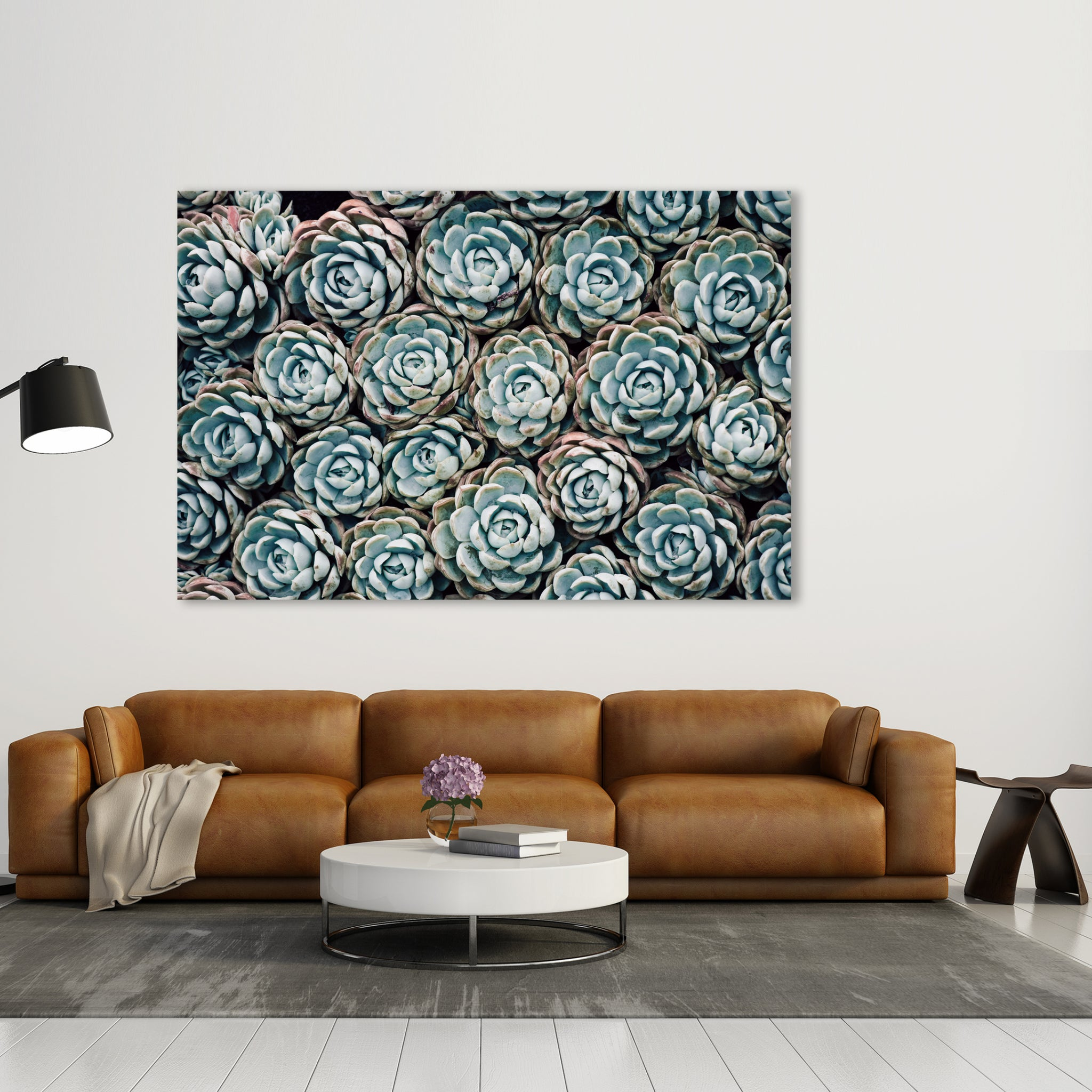 Harmony Succulent No.1 - Wall Art Mounted Under Acrylic Glass