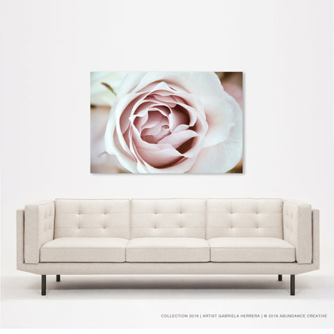 Chanel Rose - Wall Art Mounted Under Acrylic Glass