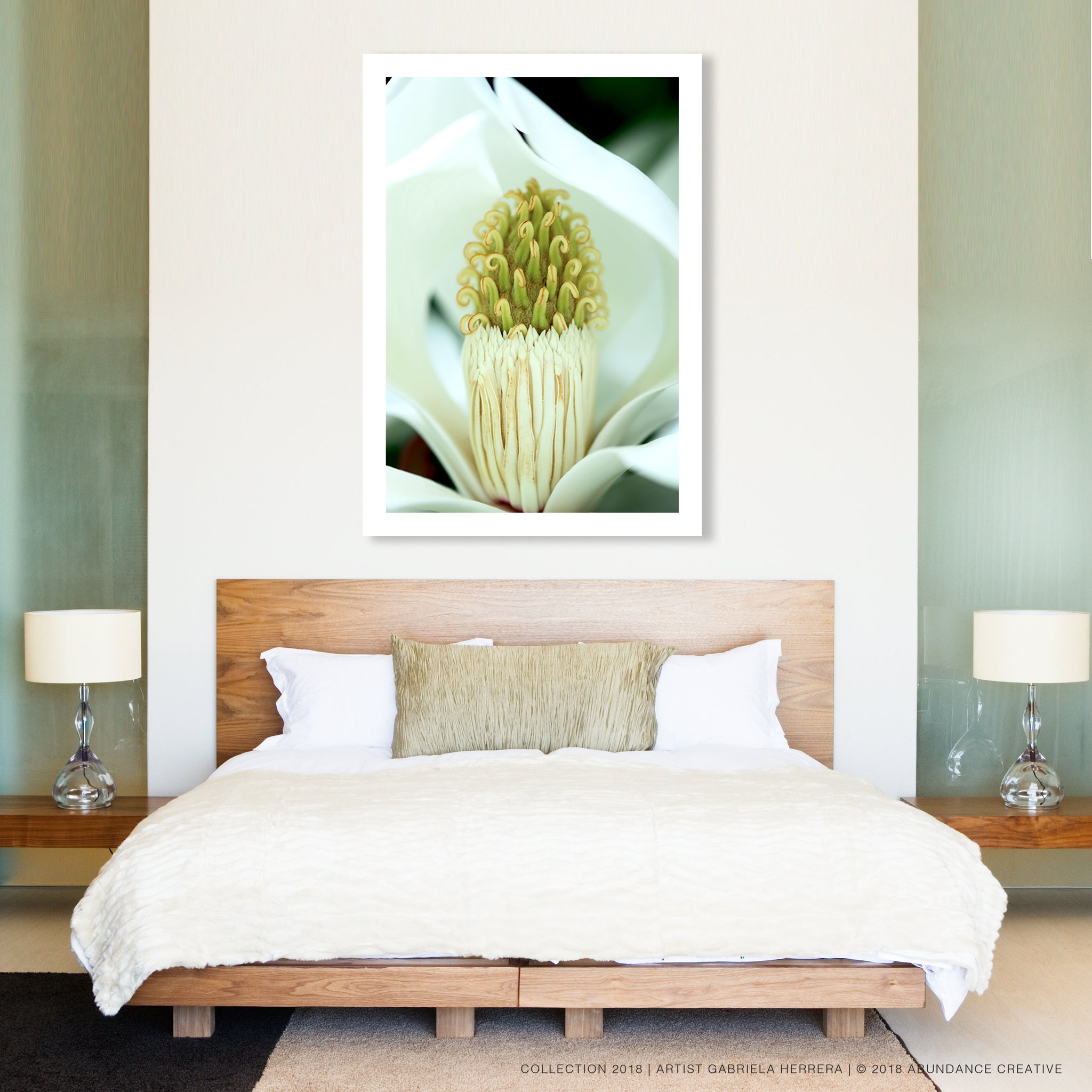 Sweet Evergreen Magnolia - Wall Art Mounted Under Acrylic Glass