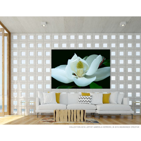 Timeless Evergreen Magnolia - Wall Art Mounted Under Acrylic Glass