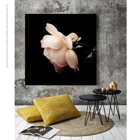 Chanel Rose Passion Beauty - Wall Art Mounted Under Acrylic Glass