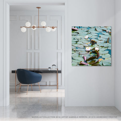 Water Lily No.4 - Wall Art Mounted Under Acrylic Glass
