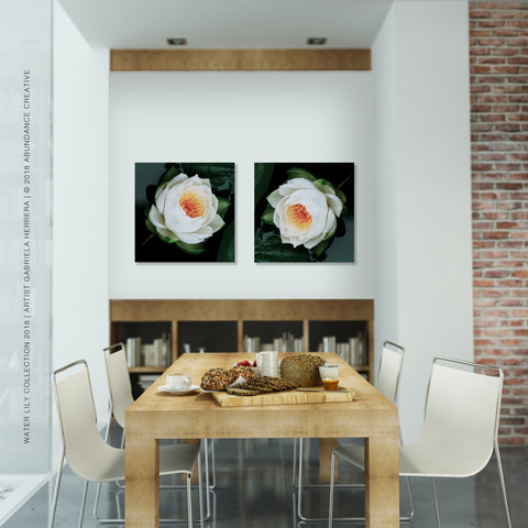 Water Lily No.6 - Wall Art Mounted Under Acrylic Glass