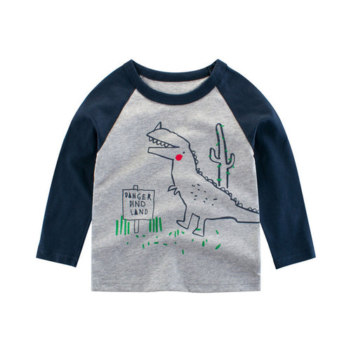 Boys Long Sleeve Raglan T-shirt + FREE Sleep Consultation