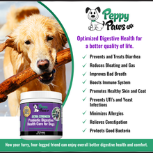 Extra Strength Probiotic Powder for Dogs for Better Digestive Health