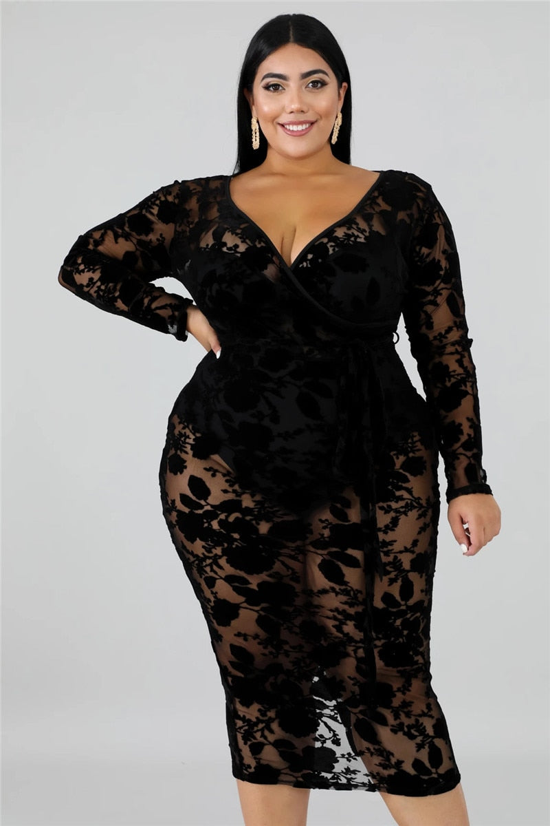 Flocking Lace | Mesh Plus Size Dress - Allures From Zenii