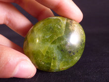 Green Opal Polished Freeform Palmstone - 43g, 45mm