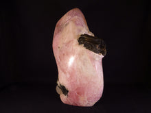 Rare One-Off Zimbabwean Morganite & Tourmaline Standing Freeform - 235mm, 4130g