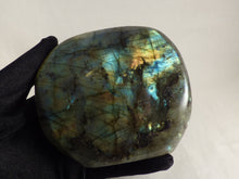 Gold and Blue Flash Labradorite Standing Freeform - 107mm, 595g