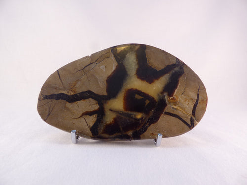 Polished Septarian Display Plate - 128mm, 202g