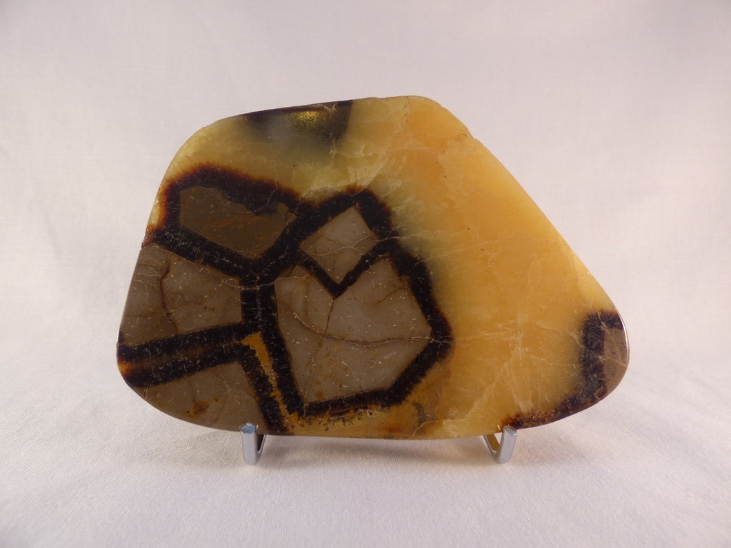 Polished Septarian Display Plate - 127mm, 285g