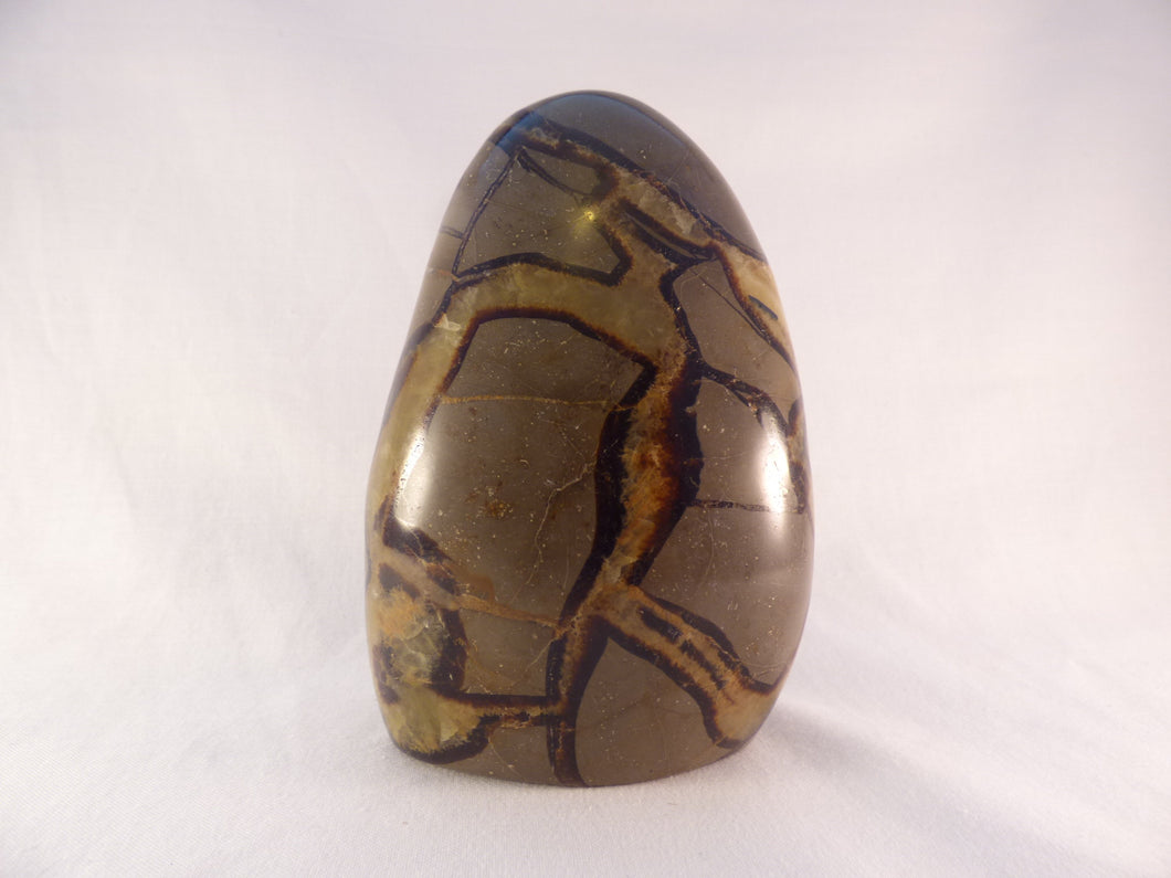 Large Septarian Standing Display Freeform - 132mm, 918g