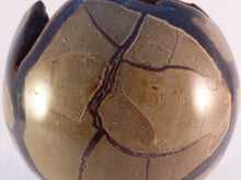 Large 'Sauvage' Calcite Centered Septarian Sphere - 80mm, 557g