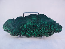Large Polished Solid Congo 'Fern' Malachite Slice - 160mm, 363g