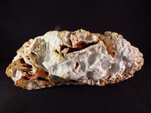 Natural Spiney Desert 'Coral' Agate - 158mm, 854g