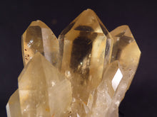 Natural Congo Golden Citrine Crystal Cluster - 62mm, 90g