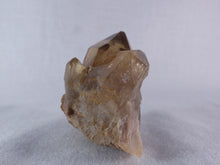 Natural Congo Dark Citrine Crystal Cluster - 50mm, 80g
