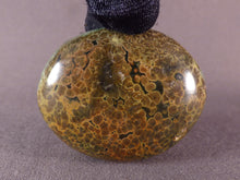 Orbicular Ocean Jasper Freeform Palm Stone - 48mm, 59g