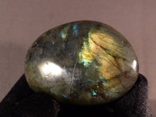 Labradorite Freeform Palm Stone - 60mm, 94g