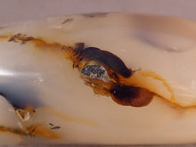Madagascan Agate Standing Display Freeform - 85mm, 335g