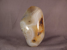 Madagascan Agate Standing Display Freeform - 95mm, 360g