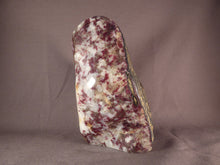 Large Madagascan Eudialyte Standing Display Freeform - 147mm, 1226g