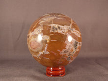 Madagascan Quartz Included Petrified Podocarpus Wood Sphere - 58mm, 388g