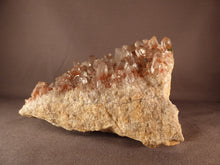 Large Natural Red Hematoid Phantom Orange River Quartz Cluster - 167mm, 1560g