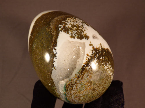 Large Orbicular Ocean Jasper Egg - 86mm, 476g
