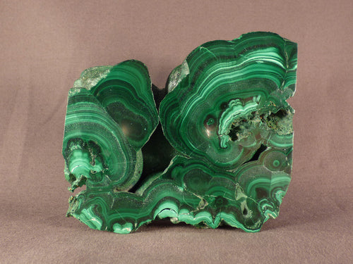 Polished Solid Congo Malachite Slice - 98mm, 545g