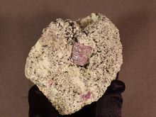 Madagascan Ruby in Quartzite Natural Specimen - 70mm, 150g