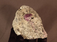 Madagascan Ruby in Quartzite Natural Specimen - 73mm, 184g