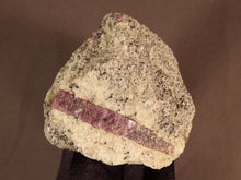 Madagascan Ruby in Quartzite Natural Specimen - 71mm, 226g