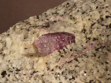 Madagascan Ruby in Quartzite Natural Specimen - 76mm, 238g