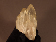 Natural Congo Citrine Crystal Cluster - 72mm, 83g