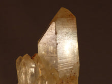 Natural Congo Citrine Crystal Cluster - 84mm, 78g