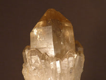 Natural Congo Citrine Cluster - 61mm, 69g