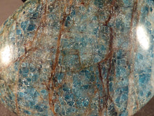 Madagascan Apatite Freeform Palm Stone - 49mm, 68g