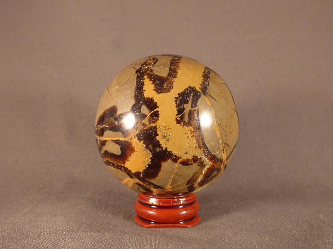 Madagascan Septarian Sphere - 63mm, 340g