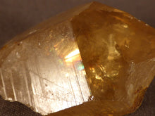Natural Congo Golden Citrine Crystal Point - 40mm, 25g