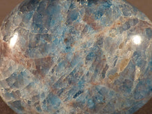 Madagascan Apatite Freeform Palm Stone - 41mm, 44g