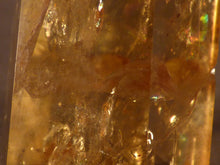 Polished Zambian Golden Rainbow Citrine Standing Crystal Point - 56mm, 60g